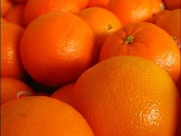 Les pelures d'orange comme carburant du futur ?