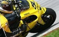 Moto GP: Nos Gaulois en action