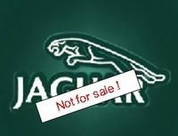 Jaguar n'est pas à vendre !!!