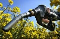 Rapport de l'OCDE : les points noirs des biocarburants