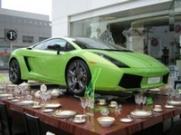 Tea time pour la Lamborghini Gallardo éléphant vert !