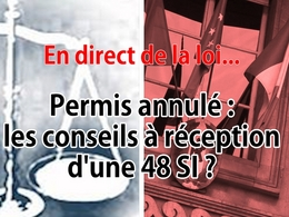 En direct de la loi - Permis annulé : quels conseils à réception d'une 48 SI ?