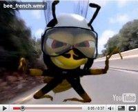 Cardo vous présente en vidéo l'histoire de « l'abeille qui… »