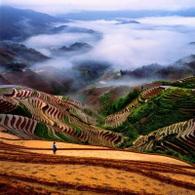 Chine : zoom sur sa politique énergétique et sur la recherche-développement