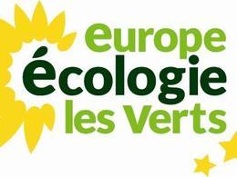 Pour Europe Ecologie Les Verts, Autolib' est une «supercherie»
