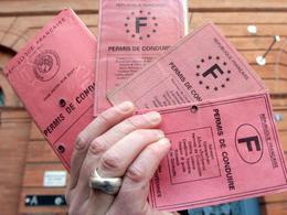 Interpellations en Île de France pour fraude au permis de conduire