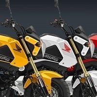 Nouveautés - Honda: la MSX125 prend des couleurs