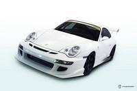 Porsche 996 GT3 by J.N. Hephaiss : miss circuit !