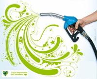 Salon Ecomobile de Lyon : Carrefour présente sa démarche écolo en matière de carburant