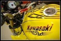 PTS 2009 en direct : Kawasaki Z1000 «Yellow Tribal»