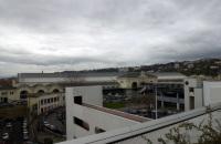 Lyon-Perrache : un mur végétal dépolluant