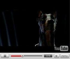 Pub Vidéo : BMW M dob' style