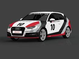 Nouvelle formule pour l'Audi endurance expérience
