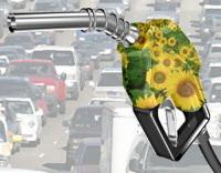 Commission européenne : une éco-certification sur les biocarburants en route