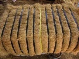 Ford veut remplacer ses plastiques par de la fibre de noix de coco