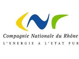 Renault signe un partenariat avec la Compagnie Nationale du Rhône pour se fournir en électricité renouvelable