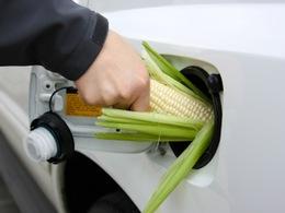 Etats-Unis : plus de maïs pour l'éthanol que pour l'alimentation