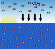 Etude anglaise : les océans absorbent nettement moins de C02 qu'avant