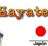 Moto GP - Kawasaki: Hayate, le nouveau nom du Ninja