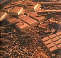 Le chocolat, un bon biocarburant !