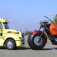 Dream Big: La moto maousse