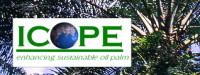 Débat/Biocarburant : l'huile de palme au coeur d'une Conférence internationale en Indonésie