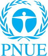 Biocarburant et recyclage : le PNUE a créé et lancé un groupe international de gestion des ressources durables