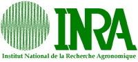 INRA : le stockage de carbone est plus stable dans les sols profonds