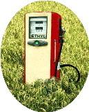 Allemagne : la part des biocarburants dans l'essence et le diesel va augmenter d'ici 2020. Les constructeurs sont d'accord.