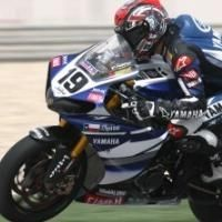 Superbike - Losail M.1: Spies taille patron
