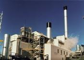 Grande-Bretagne : la première usine de production de bioéthanol à partir de betterave sucrière
