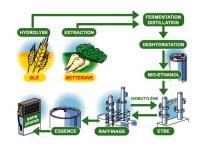 CGB France critique la baisse des exonérations fiscales pour le bioéthanol décidée par le Sénat