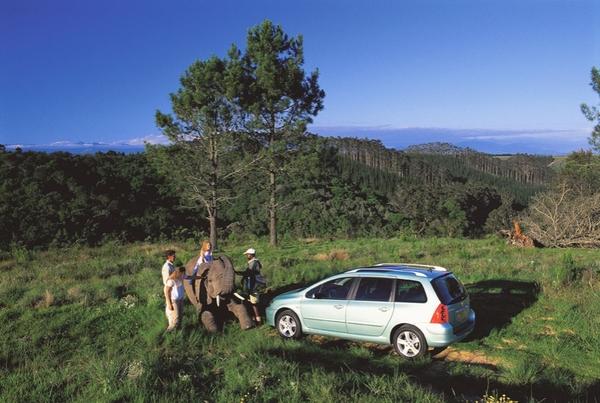 Photo Peugeot 307 Sw